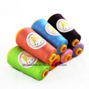 Best Price with Good Quality Sewing Thread pictures & photos