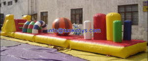 Customized Inflatable Slide for Commercial Show and Trade Show (A706) pictures & photos