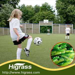 Football Grass for Playground in School pictures & photos