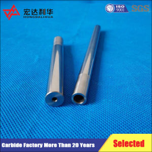 Carbide Rods with Heads and Inserts pictures & photos