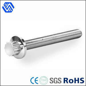 China Supplier Stainless Steel Polished 12 Point Flange Bolt Screw pictures & photos