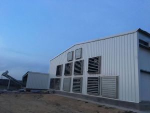 Prefab Steel Structure Chicken House/Poultry House (JW-16226) pictures & photos