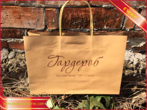 Printed Paper Bag Gift Promotional Paper Bag Shopping Bag pictures & photos
