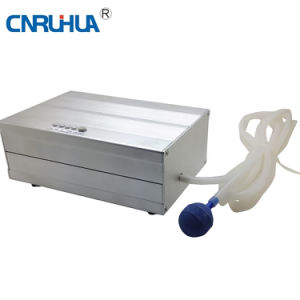 Rh-208 Ozone Generator for Cleaning Vegetables pictures & photos