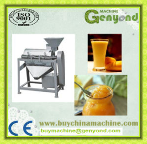 Complete Mango Jam Processing Machine pictures & photos