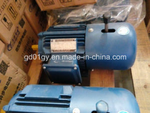 Yej Series Three Phase Electromagnetic Brake AC Induction Motor pictures & photos