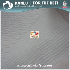 Polyester Silk Shape Fabric for Lady′s Garment pictures & photos