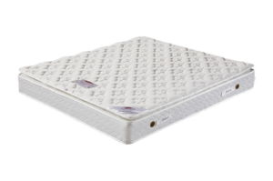 Bonnell Spring Mattress of Bedroom (fashion lady) pictures & photos