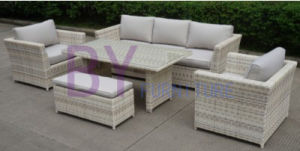by-456 New Model Good Design Garden Outdoor Rattan Sofa pictures & photos