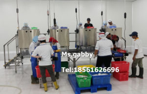 Automatic Shrimp Peeling Meat Bone Separator Equipment Machine for Shrimp Peeling pictures & photos