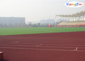 EPDM Rubber Granules for Running Track pictures & photos