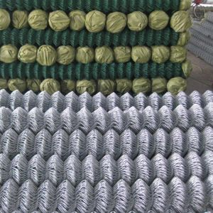 Protected Products Chain Link Fence pictures & photos