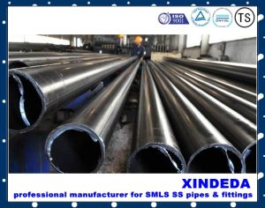 Smls Stainless Steel Pipes (TP304/316L/321/310S/904L/316Ti/S31803/S2205/S32750) pictures & photos