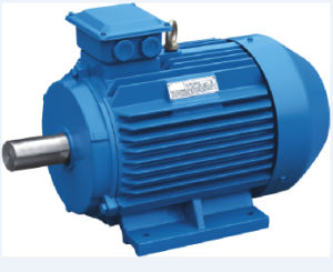 Y2 Series Three Phase Electric Motor for Industrial pictures & photos