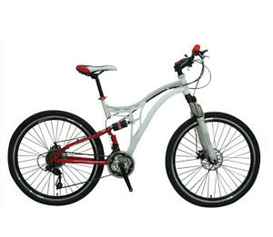 Steel Full Suspension Bicycle Mountain Bike MTB Bicycle pictures & photos