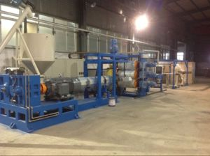 Automatic Plastic Sheet Extrusion Line (PPSJ-100A) pictures & photos
