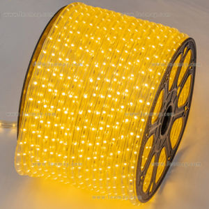 Indoor and Outdoor Decoration 110 or 230V SMD3528 LED Strip Light pictures & photos