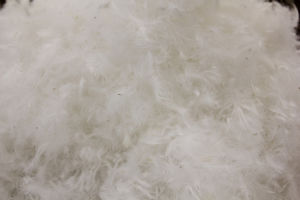 Cheaper 30% White Goose Down pictures & photos