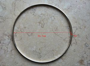 25.7cm Metal O-Ring for Horsing and Fishing pictures & photos