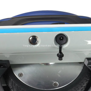 China Supplier One Wheel Self Balancing Scooter pictures & photos