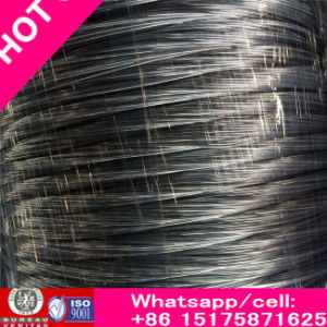 Rich Low Price Black Annealed Wire / Galvanized Wire / Binding Wire for Construction pictures & photos