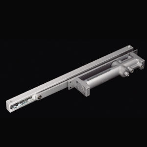 2024awh Concealed Installation40-85kg Capacity Hotel Room Application Door Closer pictures & photos