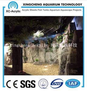 Customized Transparent Acrylic Material Acrylic Seal Tank Price pictures & photos