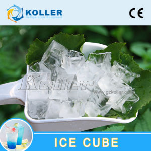 Most Popular Ice Cube Machine (3tons/day) with PLC Control System and Packing System for Ice Plant and Hotels (CV3000) pictures & photos