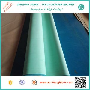 Triple Layer Forming Fabric for Paper Machine pictures & photos