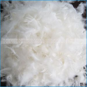 2-4cm White Goose Feather Home Textile pictures & photos