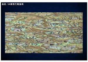 A Grade New Zealand Abalone Shell Sheet/Shell Paper pictures & photos