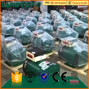 China famous brand LANDTOP Alternator pictures & photos