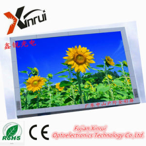 High Brightness P10 Full Color LED Module Screen Display pictures & photos
