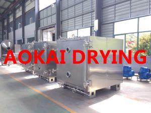 Chemical Drying Machine/ Medicine Machine / Vacuum Oven pictures & photos