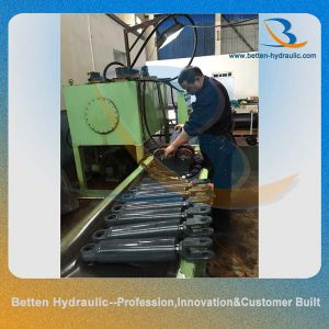 Ear Mount Hydraulic Cylinder Hydraulic RAM for Construction Engineering Machine pictures & photos