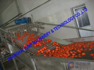 Full-Automatic Fruit Washing Machine/Large Capacity Vegetable Washer pictures & photos