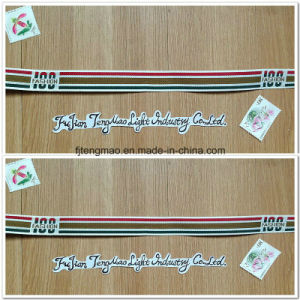Fashionable Polyester Webbing Strap pictures & photos