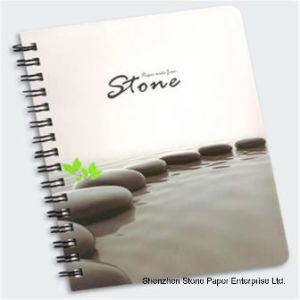 Water-Proof Stone Paper (RPD-160) Rich Mineral Paper Double Coated pictures & photos