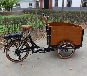 Electric Tricycle Cargo Bike for Kids Pets for Sale pictures & photos