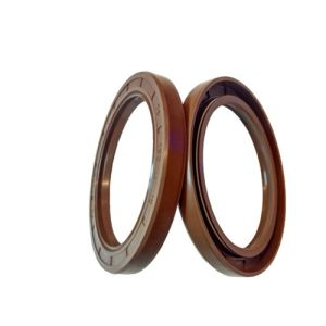 45X65X10 Tc FKM FPM Viton Rubber Shaft Oil Seal pictures & photos