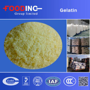 Halal Food Industrial Grade Gelatin Powder with Bese Price pictures & photos