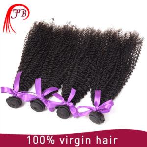 Cheap Brazilian Virgin Human Kinky Curly Hair Weft pictures & photos