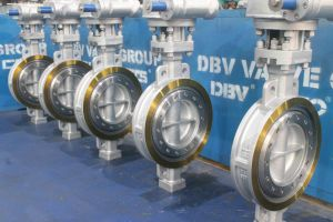Valve Wafer Butterfly Valve pictures & photos