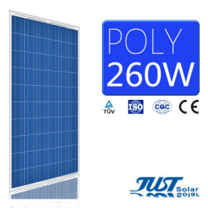 260W Poly Solar Panel with Certification of Ce, CQC and TUV