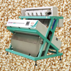 Color Sorter/Seperation Machine for Maize, Wheat, Buckwheat, Barley, Basmatic Rice pictures & photos
