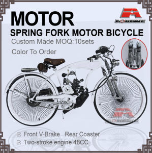 48cc Engine Gas Motor Bicycle (MB-19-3) pictures & photos