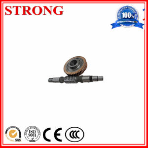 Kinds of Worm and Gear Customizable for Construction Hoist Motor or Standard pictures & photos