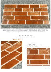 Foshan Building Material of Wall Tile with ISO9001 (36301) pictures & photos