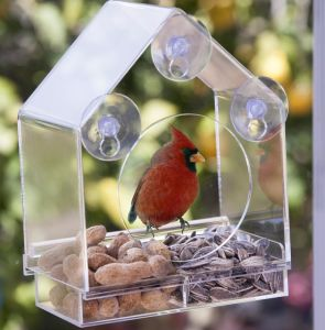 Acrylic Window Bird Feeder with Removeable Tray and Drain Holes pictures & photos