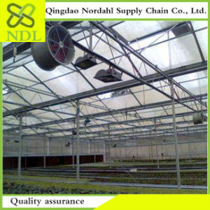 Selling High Quality of Greenhouse Ventilation System pictures & photos
